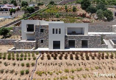 Detached Lasithi Prefecture 320sq.m