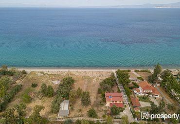 Chalkidiki, Pallini, Pefkochori, Plot seafront (1), 4200 sq.m.